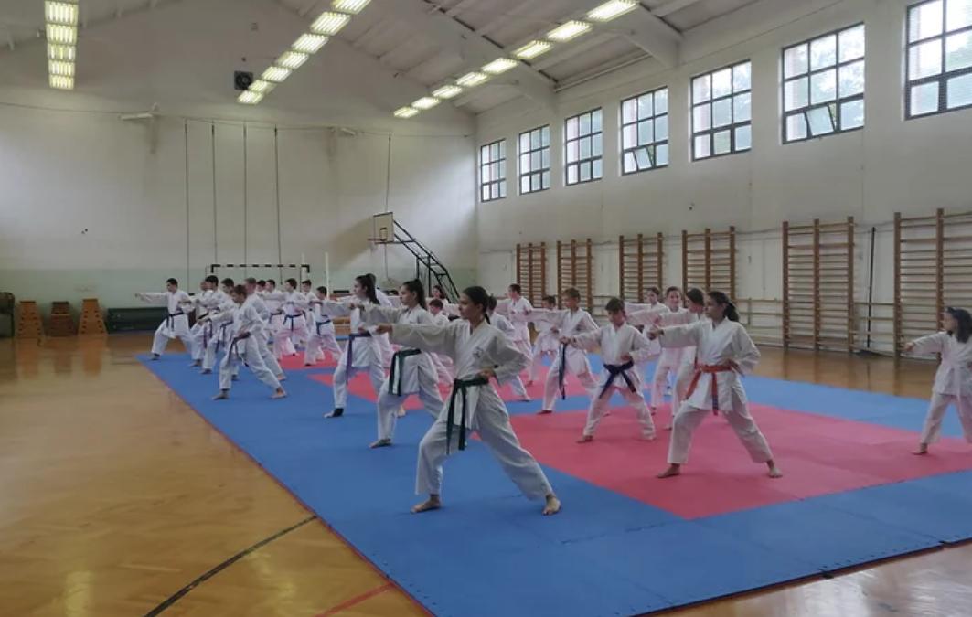 Köszönet a karate edzőtáborért