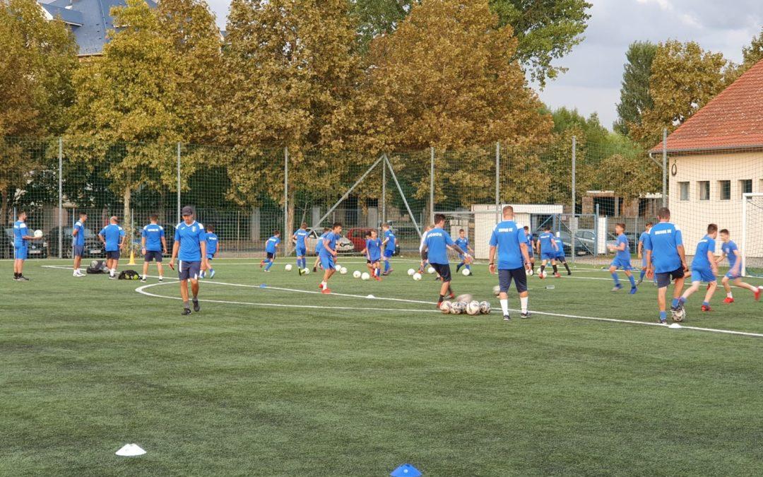 Jó úton jár a fiatal labdarúgók képzése